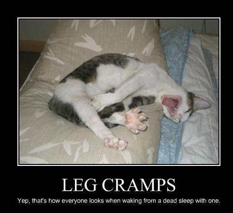 leg-muscle-cramp-cat